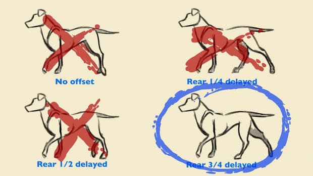 The Truth About Quadruped Locomotion | Animation World Network