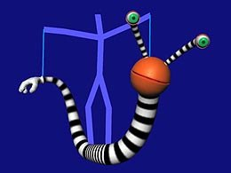 If you have the QuickTime plug-in, you can view a video clip of a worm animated using motion capture. (195 k.)