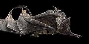 At the render stage, the dragon is shown here after the muscle system has deformed the skin and the scales have been applied.