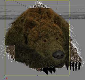 Fast interactive rendering makes for integrated high-quality renders of even complex fur dynamics. Image courtesy of Softimage Co. and Avid Technology Inc. Bear courtesy of Project Studio, France.