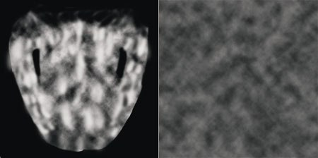 [Figures 49 & 50] A simple bump map is applied to the body texture (left). A simple specular map is applied to the model (right).