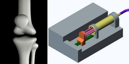 In these screen captures, VisTe students show their 3D work. Left is the components of the knee and how one part articulates with the other prior to designing a prosthetic device. On the right is an image from an animation of a syringe pump.