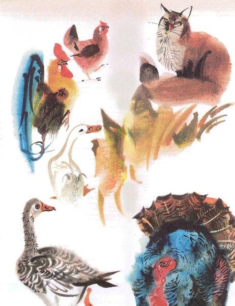 Mirko Hanák's animal studies in his watercolor technique.