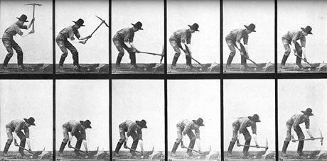 Muybridges work was essential in the evolution of animation.