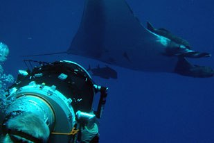 Sharks 3D is the most recent nature documentary to get the 3D treatment. An IMAX theater film presented by Jean-Michel Cousteau.