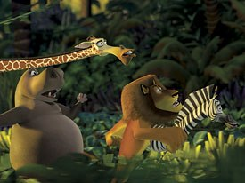 Most of the plants in the film are actually from Madagascar. They were redesigned, repositioned and stylized to fit in with the look of the film.