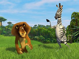 Marty the Zebra's curiosity gets the Zoosters in trouble.