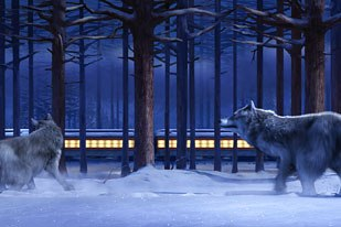 The motivation for the ticket ride was the books illustration of wolves looking at the train. Zemeckis wanted the lost ticket to float and land in the forest, where the wolves arrive and strike the same pose as the book.