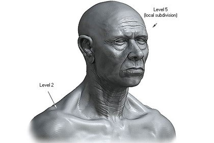Character work is one obvious use for local subdivisions. By setting the face up to use many more subdivisions than the upper torso, an artist can create both the head and torso within a single model.