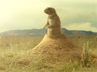 Character animation was a challenge for the animation team. The animation director studied a prairie dog zoo exhibit to get right size and fur.