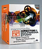 Macromedia's Director was first used as the storyboard software on The Iron Giant, which explains why that department at Warner Bros. Feature Animation is called