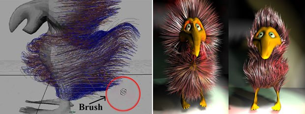 [Figures 10, 11] A familiar Maya-type Brush helps groom (left) an unruly hairstyle. A rushed styling job (right) makes the bird almost presentable.