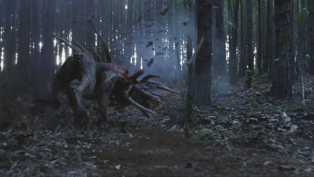 A new forest generator was created from ICE to get believable interaction.