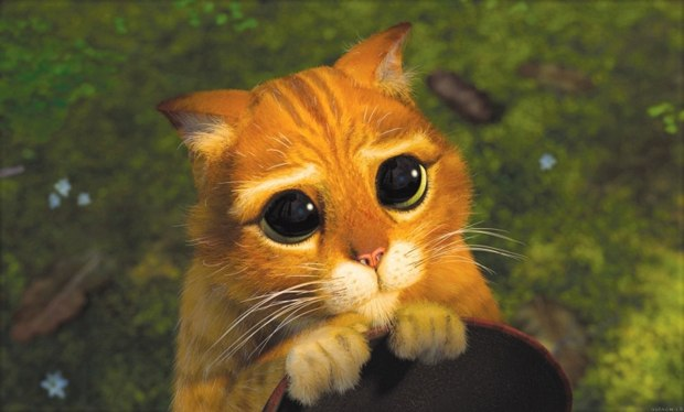 Puss in Boots was the big standout in Shrek 2. Courtesy of DreamWorks Animation.