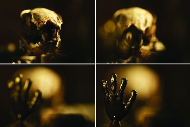 The Advanced Art of Stop-Motion Animation': Digital Cinematography ...