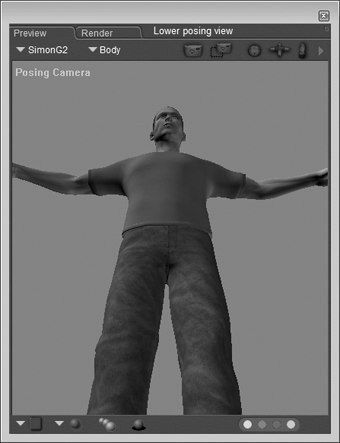 [Figure 6-13] Positioned posing camer