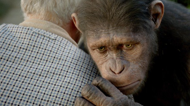 Certain expressions from Serkis' performance needed to be tweaked in order to compensate for the muscular differences between apes and humans.