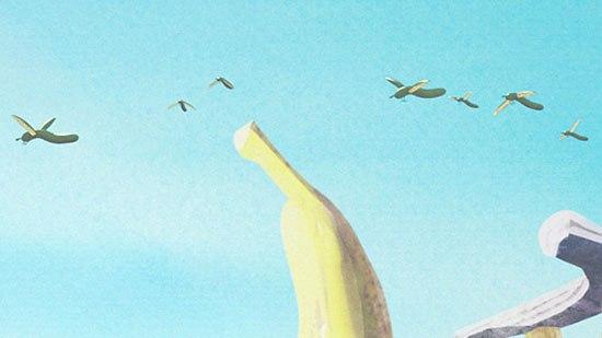 Cucumbirdy -- birds/cucumbers
