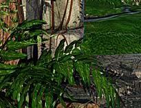 This natural scene was created using Maya by G. Mundell, P. Roy and M. Kitchen. Courtesy of and © Alias Wavefront.