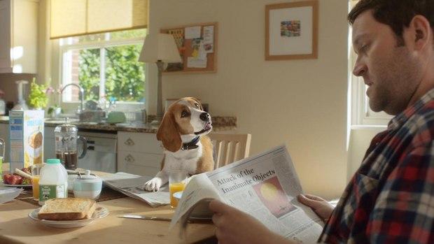 Beagle Life Insurance >> Finish Creates Cg Animated Dog For New Beagle Street