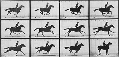 Eadweard Muybridge's galloping horse, 1878. © Dover Publications.