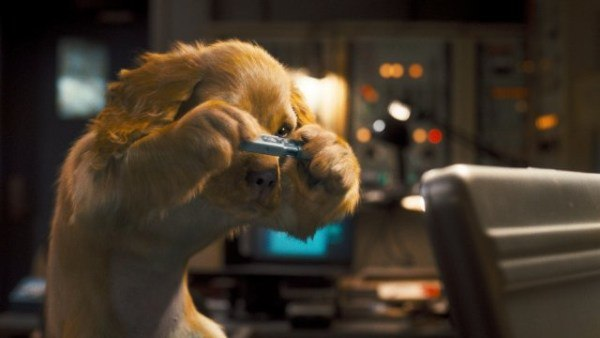 Tippett Studio and Sony Imageworks handle CG felines and canines. Courtesy of Warner Bros.