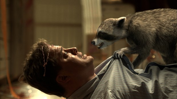 Who's the real star of the movie? Fraser or the coon? All images courtesy of Summit Ent.