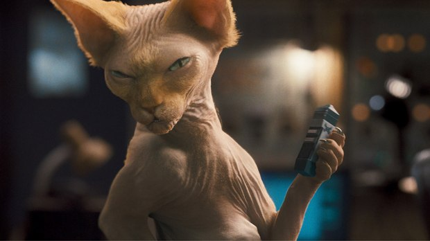 Tippett handled Kitty Galore, conquering issues with fur, skin and eyes. All images courtesy of Warner Bros.