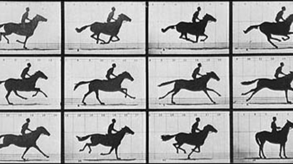A Brief History Of The Animated Horse Animation World Network