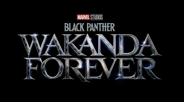 'Black Panther: Wakanda Forever' Synopsis Revealed