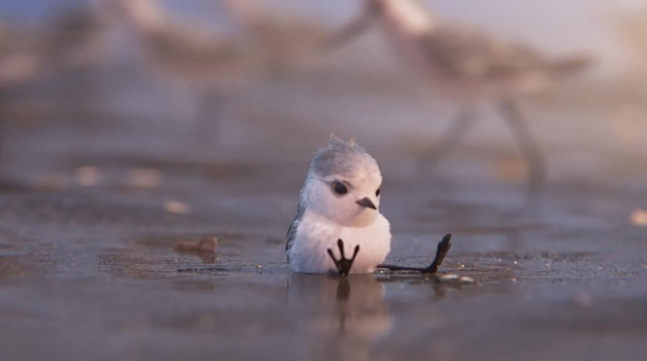 explore concept art & stills from pixar short 'piper' | animation