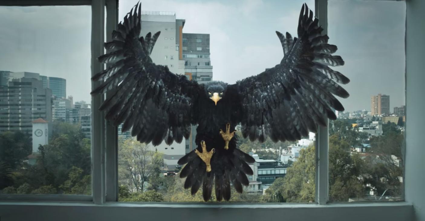 Method Brings Tecate S Black Eagle To Life Animation