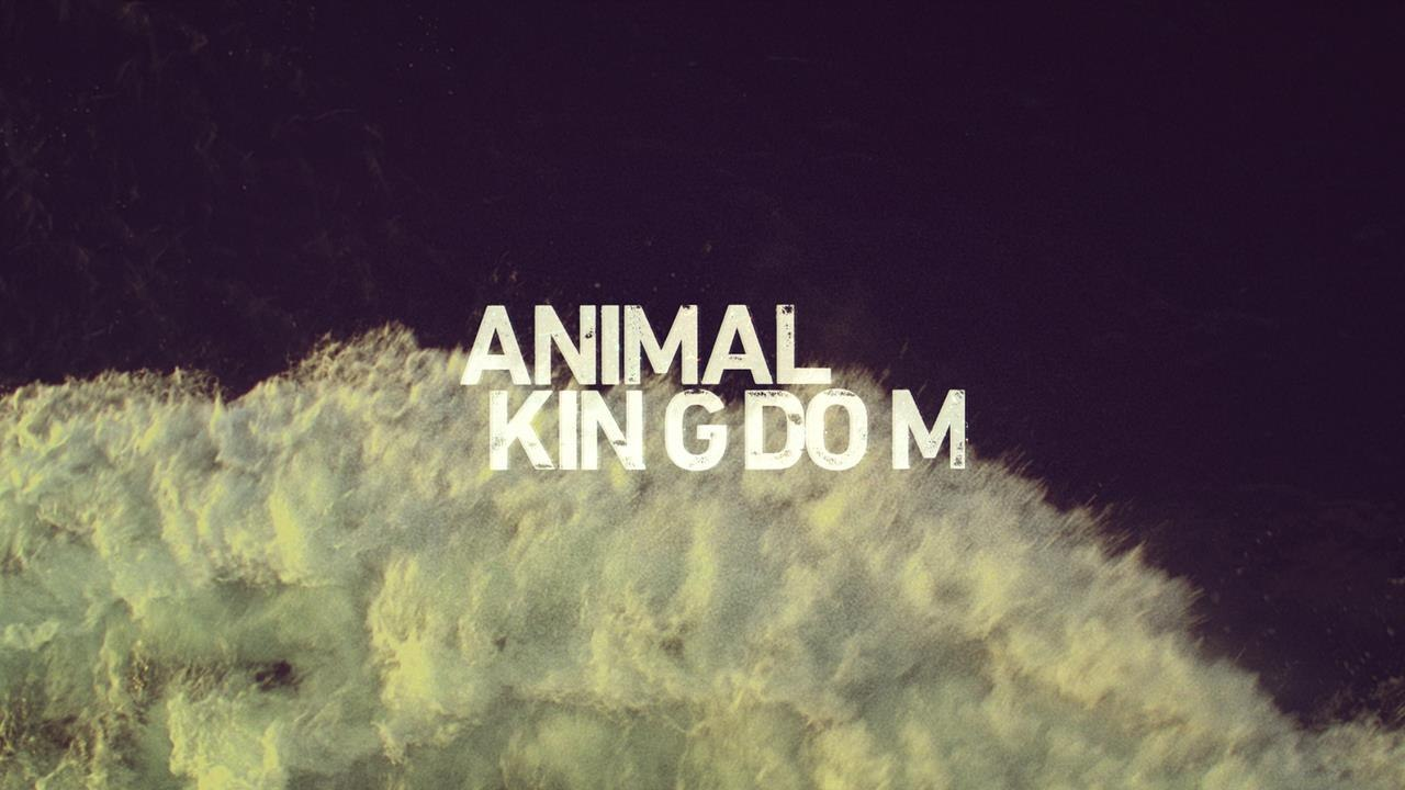 Sarofsky Delivers Main Titles for TNT's 'Animal Kingdom' | Animation