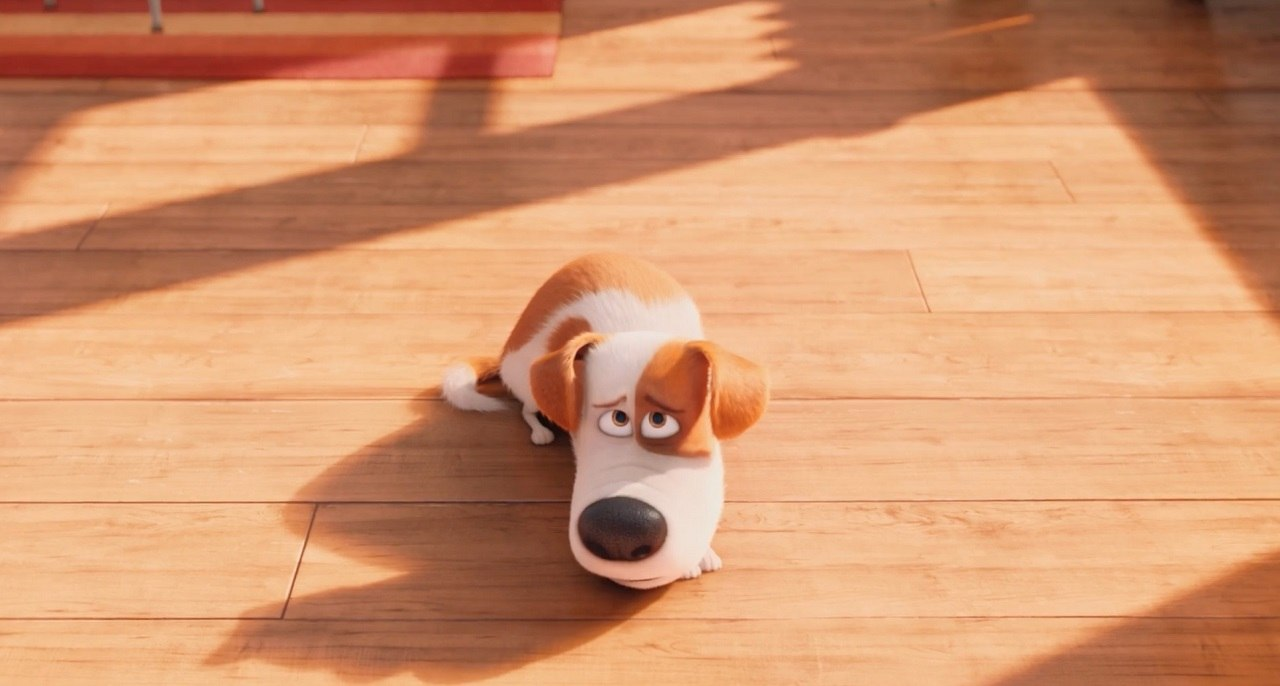 Illumination Drops Louis C K From The Secret Life Of Pets Sequel Animation World Network