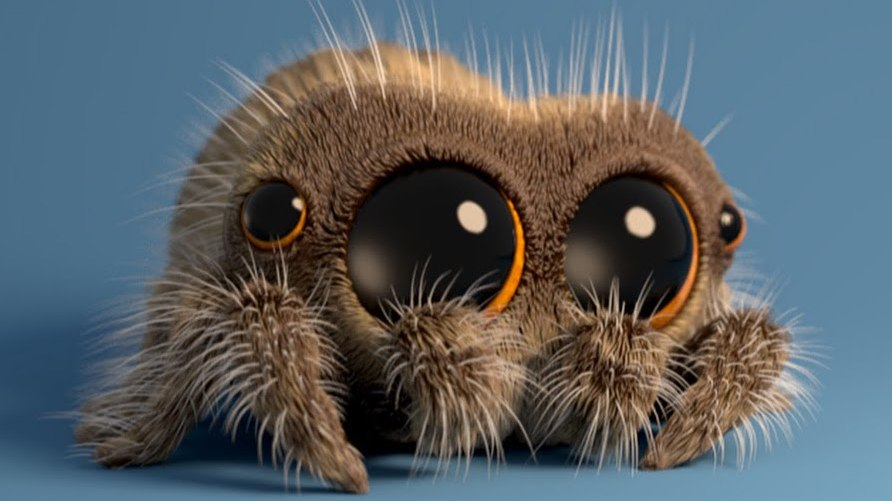Fresh Tv To Expand Lucas The Spider Web Videos