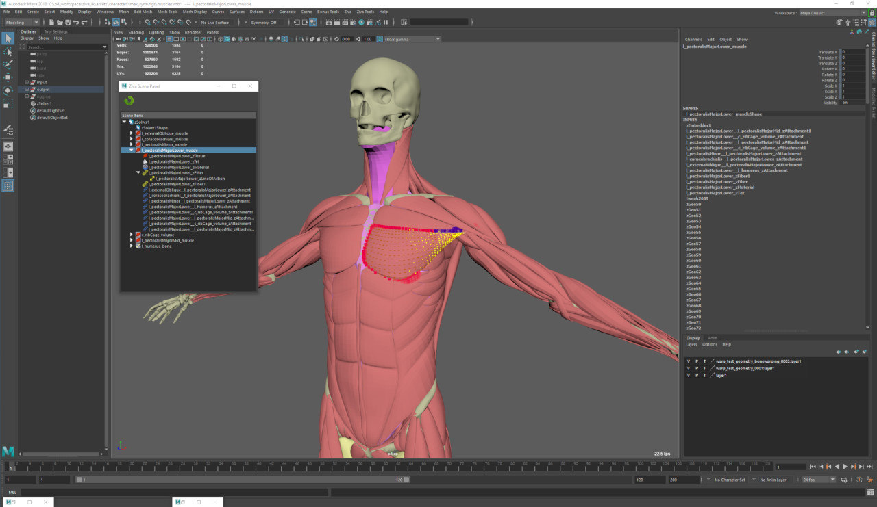 Ziva Dynamics Releases Ziva VFX 1 4 | Animation World Network