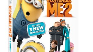 'Despicable Me 2' Exceeds Industry Records