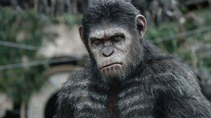 'Planet of the Apes' Shorts Document Gap Between 'Rise' and 'Dawn'
