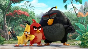 Where Will 'Angry Birds' Movie Finally Roost?