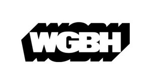 WGBH Appoints Terry Fitzpatrick