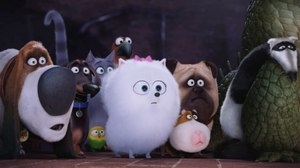 The Cat is Out of the Bag in New Trailer for Illumination's 'Secret Life of Pets'