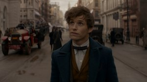 Framestore Lends VFX Wizardry to 'Fantastic Beasts and Where to Find Them'