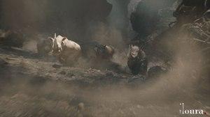Iloura Creates Ravaging Rhinos for 'Jumanji: Welcome to the Jungle'