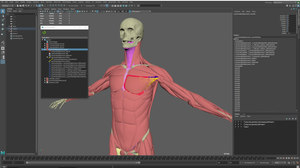 Ziva Dynamics Releases Ziva VFX 1.4
