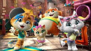 '44 Cats' Sets Rai Yoyo Debut Ratings Record
