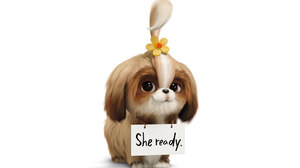 Tiffany Haddish's Daisy Searches for a Hero in Latest 'Secret Life of Pets 2' Trailer
