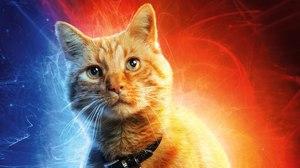 Trixter Delivers Purr-fect VFX for 'Captain Marvel'
