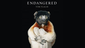 Bob Weinstein Back in Business with Animated Feature, 'Endangered'