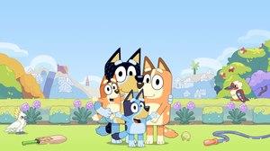 BBC Preschool Series 'Bluey' Launches on Disney+