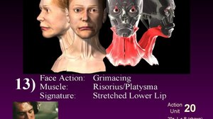 Face to Face with Chris Landreth's Masterclass on Facial Animation